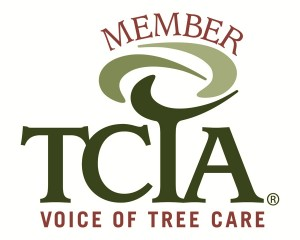 TCIA member Hollinger Tree Service serving Stark, Summit, & Carroll County