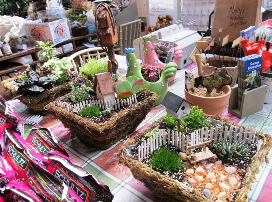 Learn to make a miniature garden of your own!