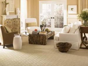 Barrington_Carpet
