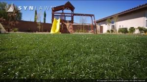 SYNLawn_Playground1
