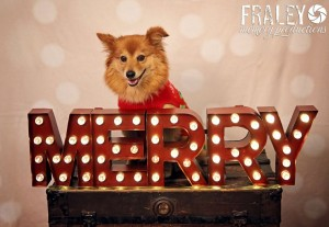 Fraley Memory Productions_Holiday2