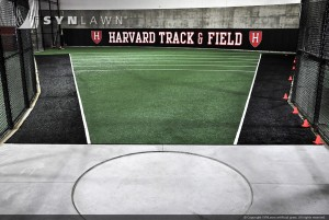 SYNLawn_Harvard Sports