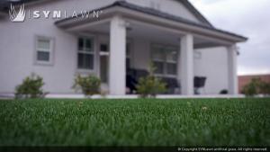 SYNLawn_Lawn